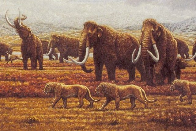 Quaternary Period 1 Million Years Ago Untill Today