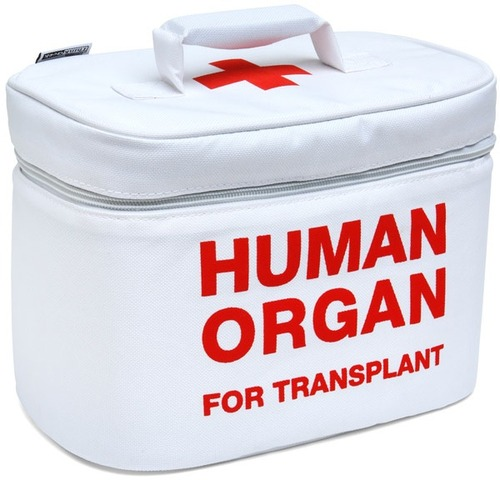 First organ transplant (kidney)