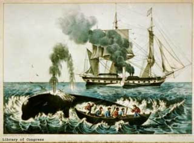 First Whalers arrive in Pacific