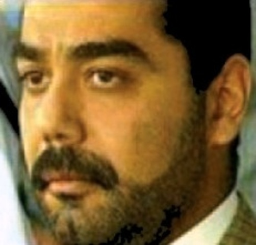 Saddam Hussien              Born                  Age 0-3                  His mother's remarriage                  Saddam flees for a better life                  Saddam goes to high school                  Saddam gets post secondary education                  Saddam marries his first wife                  Uday Hussein is born                  Qusay Hussein is born                  Raghad Hussein is born                  Saddam becomes president                  Iraq invades Iran                  The Iraq-Iran truce                  Saddam is captured                  Dies
