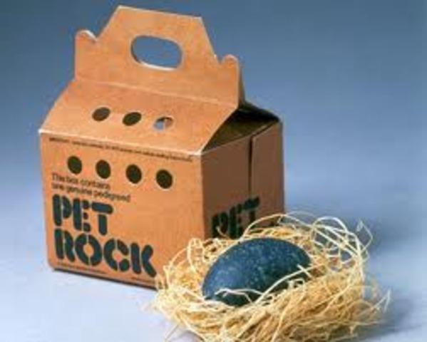 Pet rocks