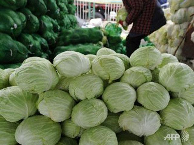 Formaldehyde cabbages cause for alarm