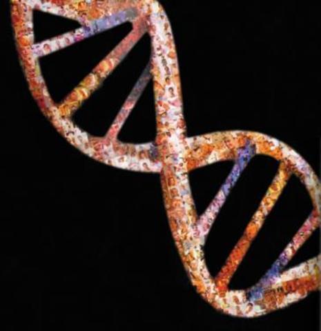 Presentación del genoma humano