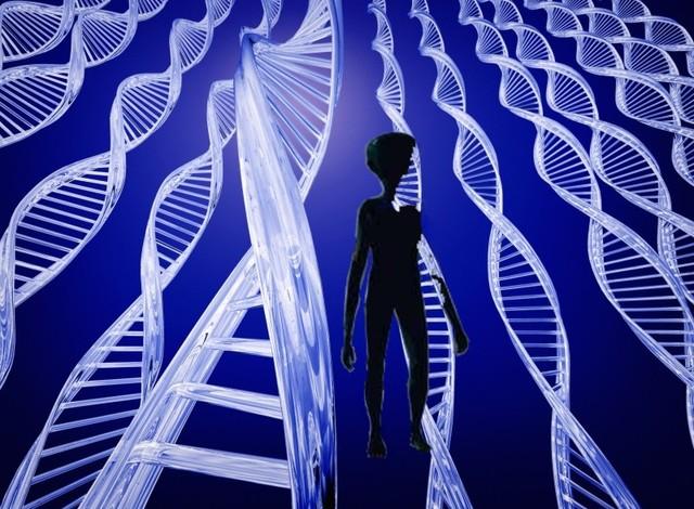 Presentación mundial del código genético humano