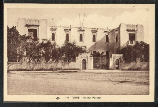Creation of an Institut Pasteur at Tunis