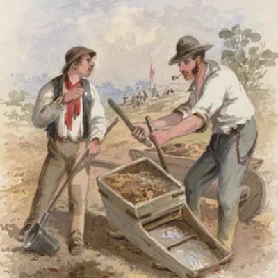 Australian Gold Rush by Sofia 5/6J timeline