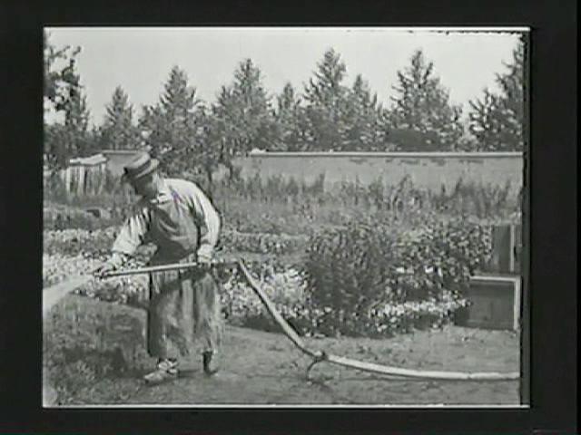 Watering The Gardener