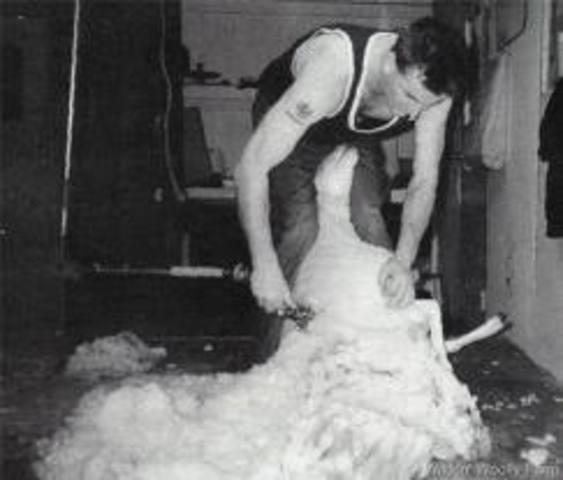 Shearers Strike