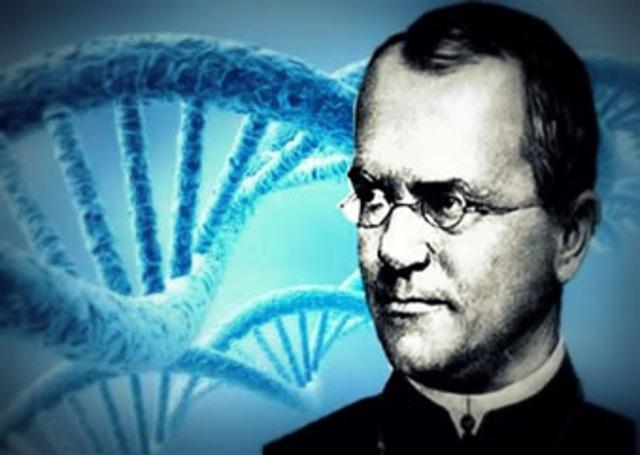 Os segredos da Hereditariedade, por Gregor Mendel