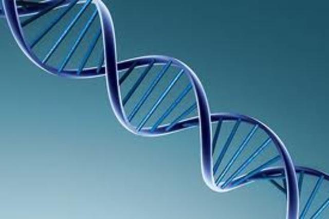 Descoberta da estrutura helicoidal do DNA