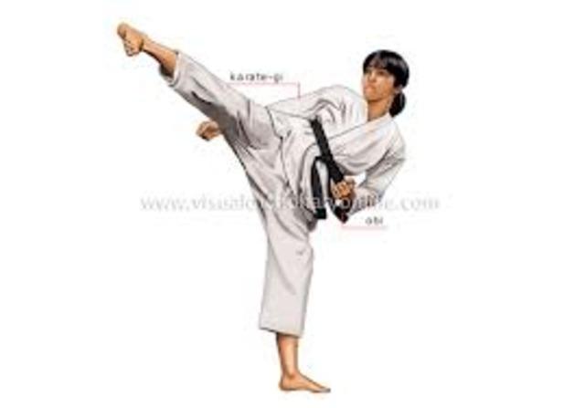 mi curso de  karate