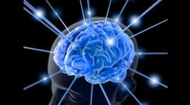 Orígenes de las neurociencias  timeline