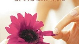 The Truth About Forever by Sarah Dessen timeline