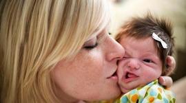 Pregnancy and Prenatal Development timeline