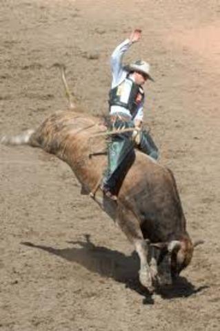 Ride a Bull