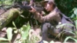 CONFLICTO ARMADO EN GUATEMALA SENALANDO LOS DERECHOS QUE FUERON VIOLADOS timeline
