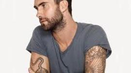 Adam Levine timeline