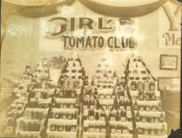 Girl's Tomato club AHEA