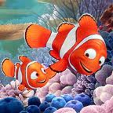 Nemo and his Dad are introduced.  They live on the Coral Reef.