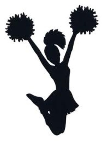 Made the cheer team