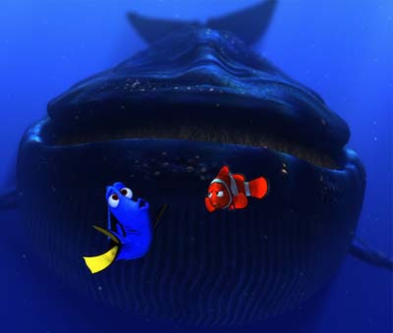 Marlin and Dory get lost, and get inhaled by the whale.