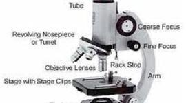 Development of a microscope timeline