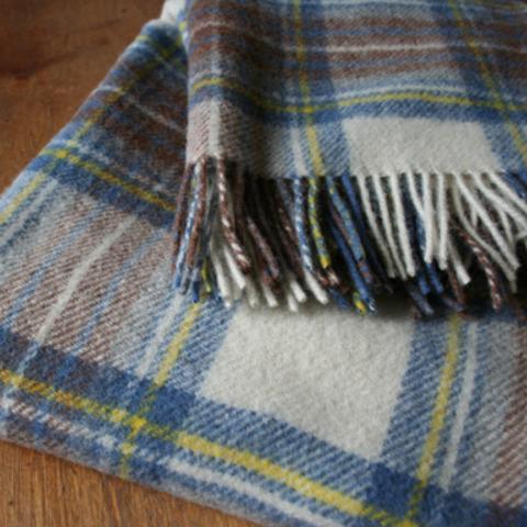 Primary-Blanket