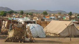 Campo De Refugiado Líbano Ain al-Hilweh : / 12 , 15 , 26 Turma 7.1 timeline
