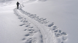 La Nieve timeline