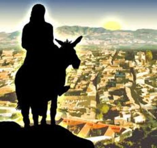 Jesus Arrives in Jerusalem on a Donkey (Part 1)