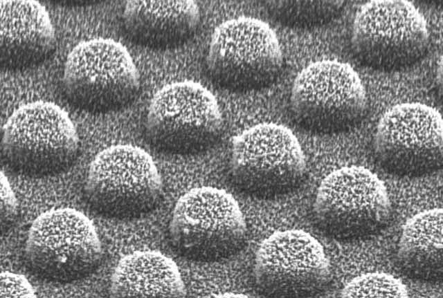 Scientists Develop Self-Cleaning micro agents
