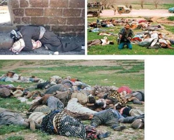 Chemical weapons used against Kurdish town of Halabja
