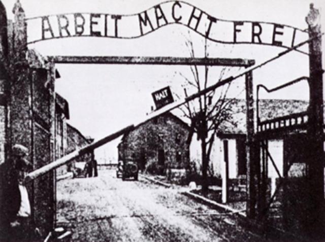 Son deportados a Auscwitz-Birke