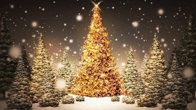 Célébrer le réveillon de Noël