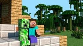 My life as Minecraft Steve timeline