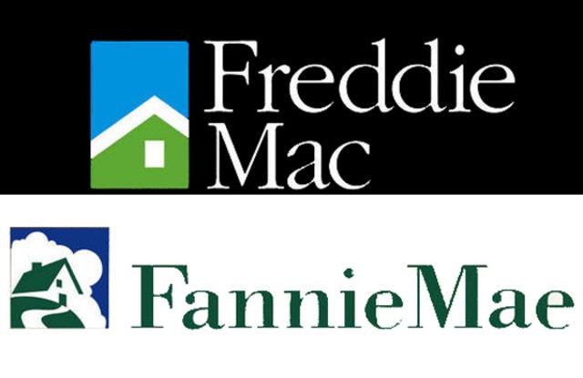 Government Seizes Fannie Mae and Freddie Mac