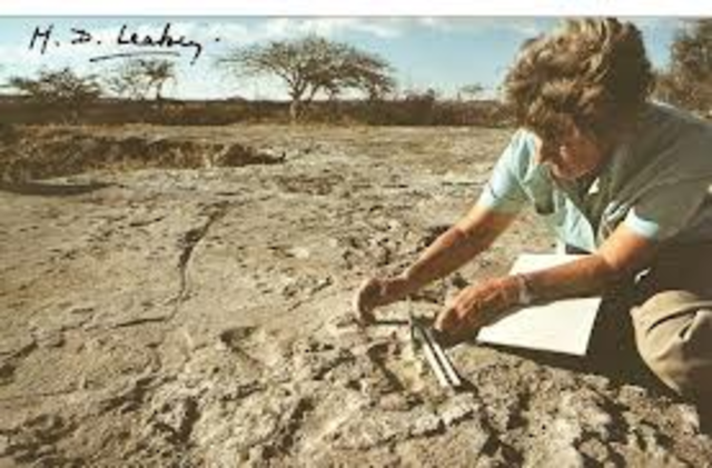 Mary Leakey first experiment