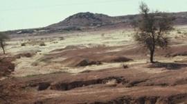 Man's Impact On The Desert Biome timeline