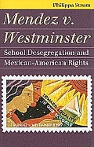 judicial side of the chicano movement Judicial side of the chicano movement chicano studies 3311 race relations during the middle of the 18th century, the relationship between the americans and the mexican-americans soured more than ever before the mexican- americans realized that something had to be done about the second class treatment they had been receiving for over a century.