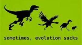 EVOLUTION (by: Jonah Pearce, Lillie Chapin, Kim Brunney) timeline