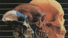 DESARROLLO DE LA TEORÍA DE LA EVOLUCIÓN(Inti) timeline