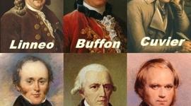 Preevolucionistas y Evolucionistas timeline
