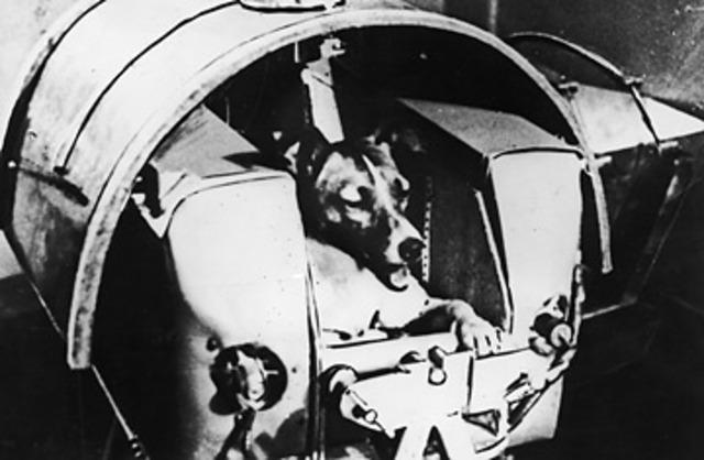 USSR launched Sputnik 2 with a dog named Laika