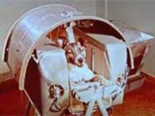 1st dog in orbit Laika