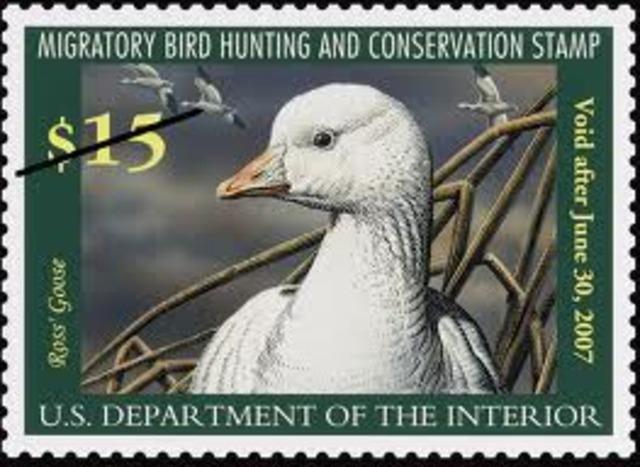 Migratory Bird Hunting Stamp Act