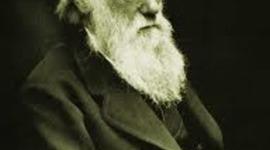 Darwin i la teoria de l'evolució timeline