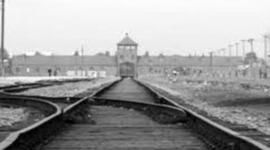 Road to Auschwitz By Jared Evon  timeline