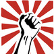 Revolution fist