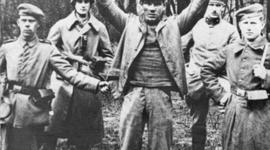 The Revolution of 1918 timeline