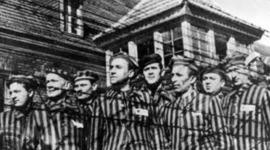 Holocaust timeline!